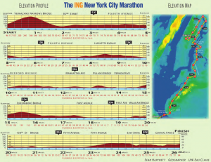 NYC_elevation_map-300x231